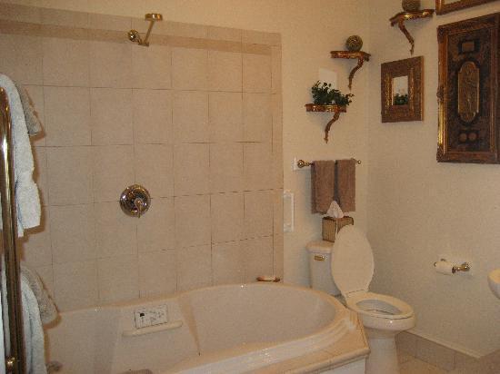 Abbington Green Bed & Breakfast Inn and Spa: Jacuzzi tub and shower with no shower curtain
