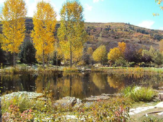 Wyndham Vacation Resorts Steamboat Springs: Brilliant aspens in Fall