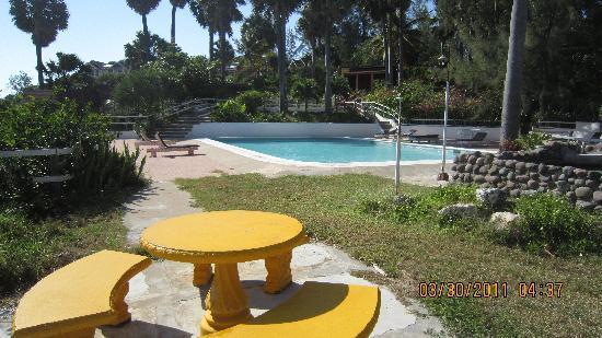 Treasure Beach Hotel: Pool View