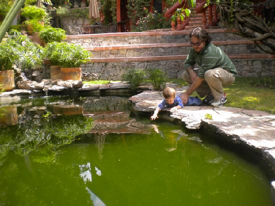 Casa Puesta Del Sol: estanque