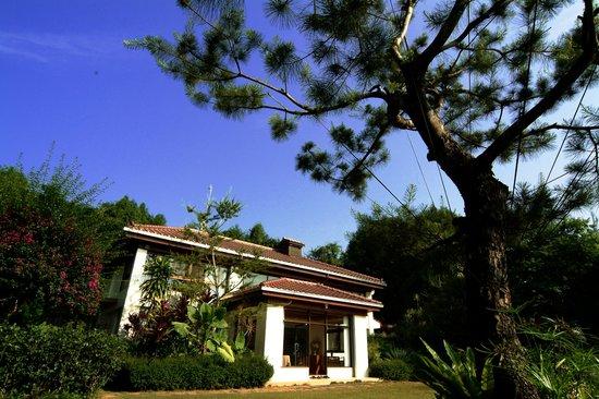 Nantou Puli Pines Garden B&B: MINSU & PINES