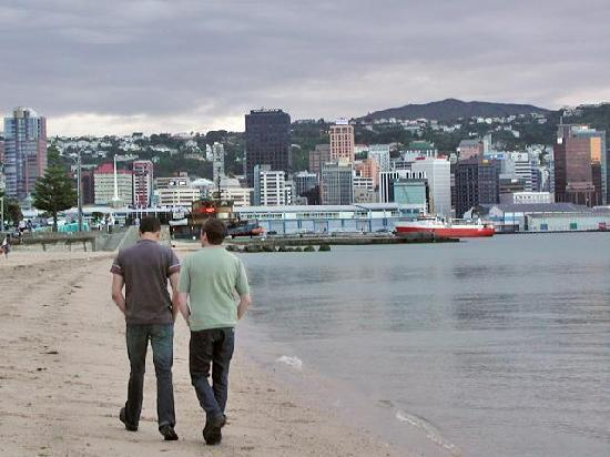 Wellington City Bed and Breakfast: 10 minutes walk to Oriental Bay (this is a winter picture!)