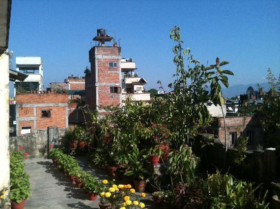 Pilgrims Guest House: terrasse sur le toit
