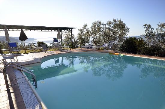 la piscina con vista Firenze - Foto di Agriturismo il Pianaccio, Montale - TripAdvisor