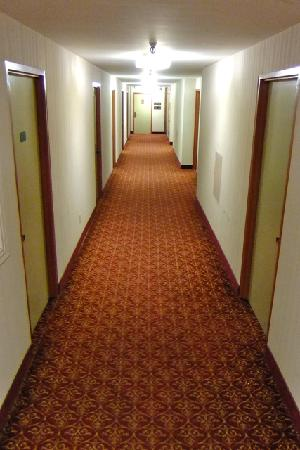 hallway of the Marlborough Hotel