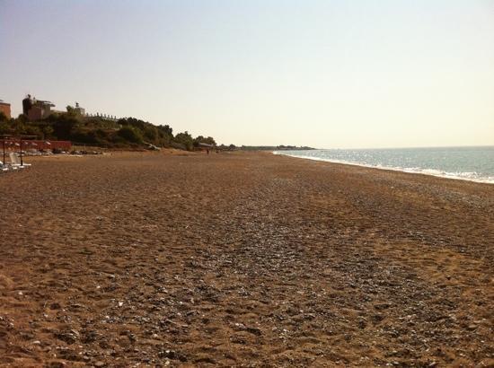Safak Beach Hotel: beach