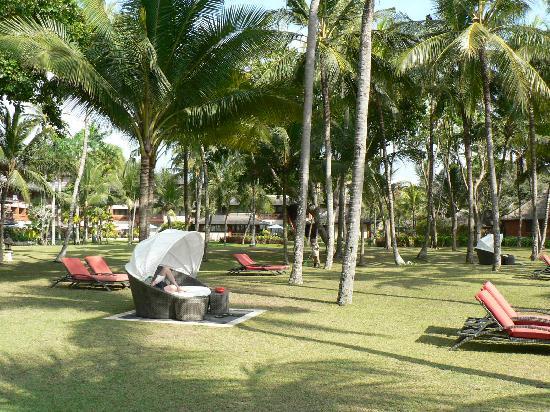 Club Med Bali: La cocoteraie
