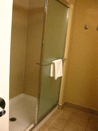 Hampton Inn & Suites Burlington: shower area
