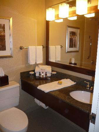 Buffalo Marriott Niagara: The bathroom
