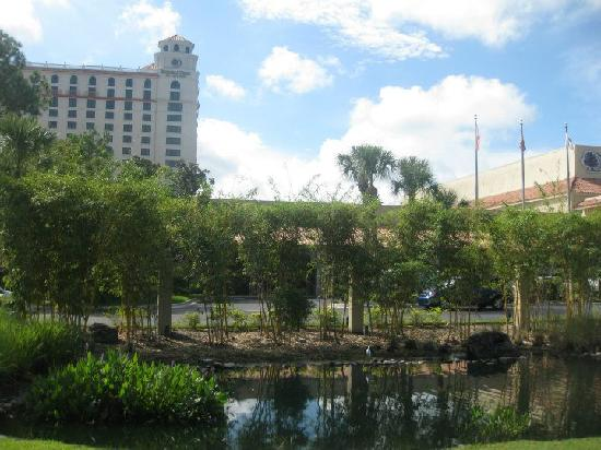 Doubletree by Hilton Orlando at SeaWorld: From the road the Doubletree @ Seaworld