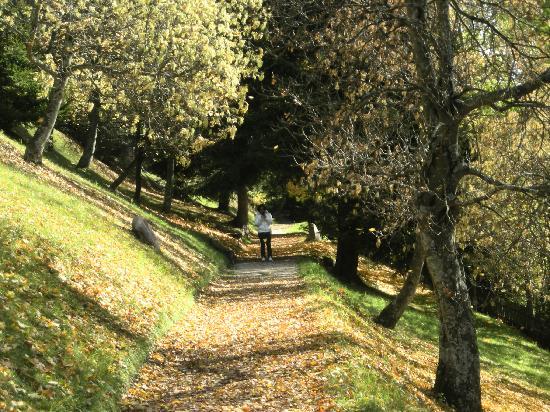Hotel Adler Dolomiti Spa & Sport Resort: passeggiata