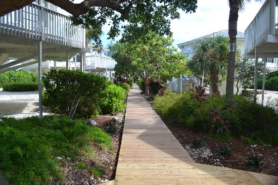 Topsider Resort: Boardwalk, Topsider