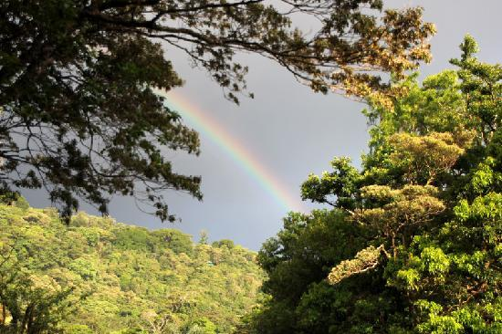 Monteverde Cloud Forest Lodge: Regenbogen