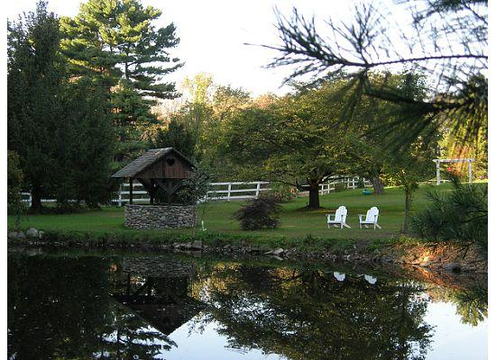 Inn On The Horse Farm: The pond at the inn