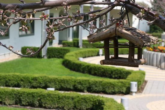 Corinthia Hotel Budapest: Garden