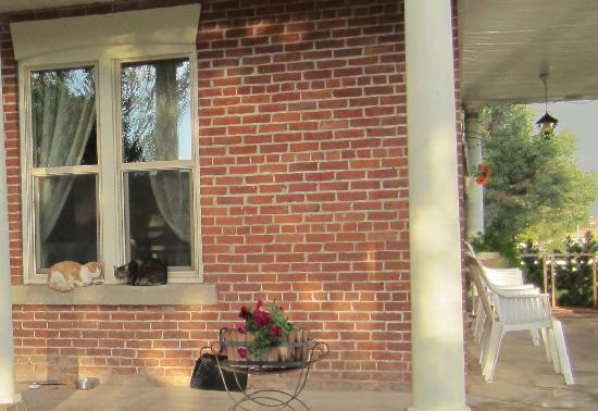 The Panguitch House: Even the neighbor's cats like to visit Crum Cottage