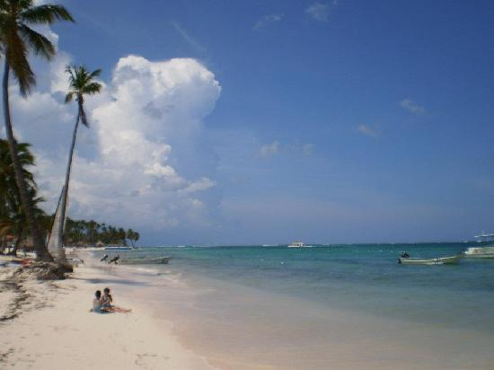 Dreams Palm Beach Punta Cana : The beach was gorgeous!