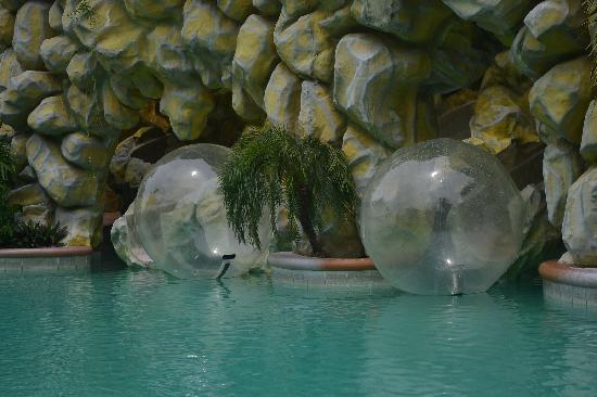 Tanza, Philippines: Love the Zorb!