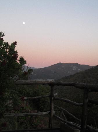 El Bosque de las Vinas: El paraje... Incomparable