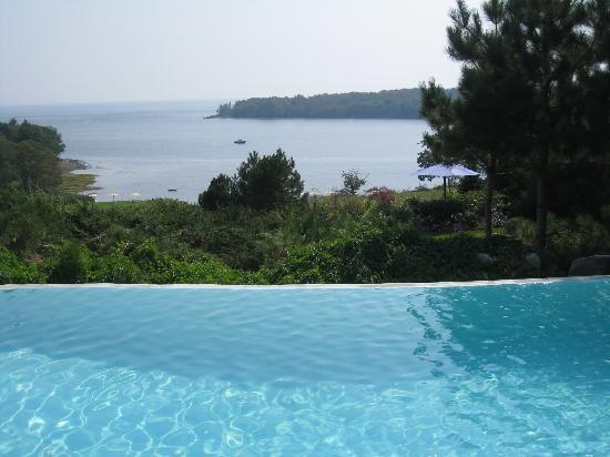 Island View Inn: Edge pool And View