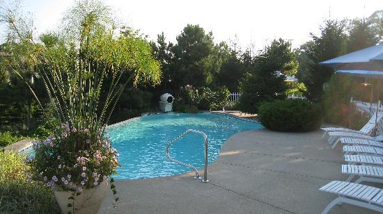 Island View Inn: Pool