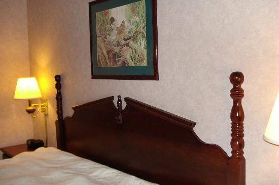 Hampton Inn Dubois: King bed