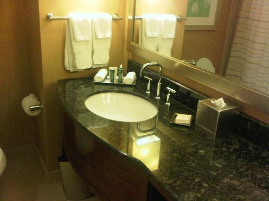 Bathroom Sinks Orlando bathroom sink - picture of hilton orlando, orlando - tripadvisor