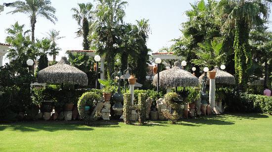 Club Hotel Sera: Le jardin