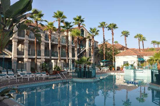 Staybridge Suites Lake Buena Vista: Piscina