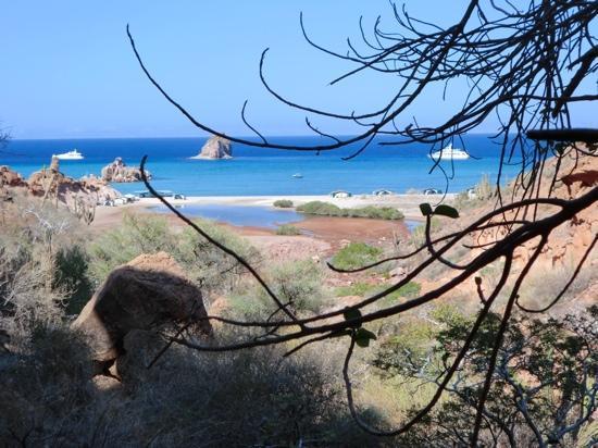 Baja Camp: il campo visto dalla terra