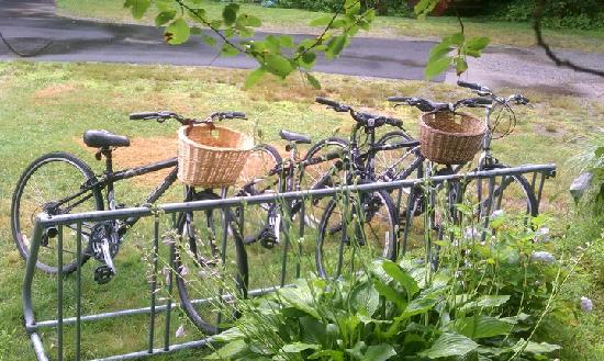 Old Sea Pines Inn: Bring your bike tons of indoor and outdoor availble just an 1/8 mile from the Cape Cod Rail Trai