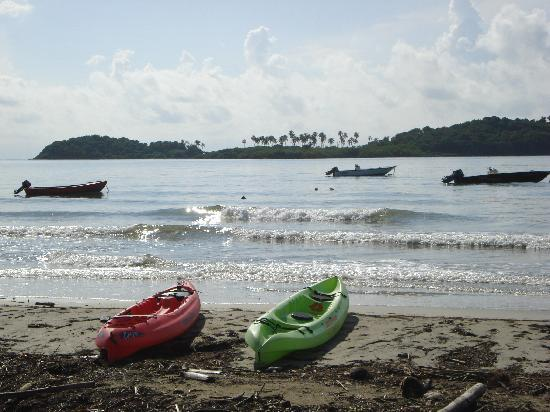 Barefoot Travelers Rooms: getting ready to go to Monkey Island - the water was like glass, and just as clear!