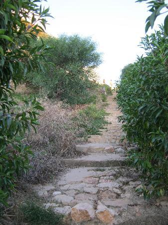 Clube Porto Mos: path to hotel from beach