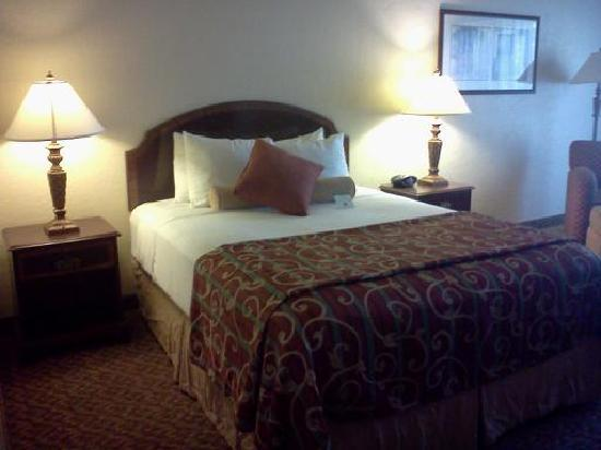 BEST WESTERN PLUS Garden Court Inn: Queen Bed Room