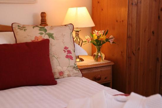 Mandeley Guest House: Rebecca