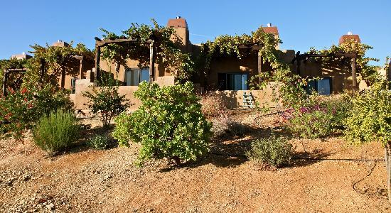 Wild Coyote Estate Winery Bed & Breakfast: Front View of the Casitas