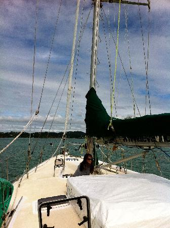 Te Vaka Day Sail: view of the boat