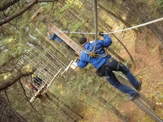 Rafter 6 Ranch: tree top rope course