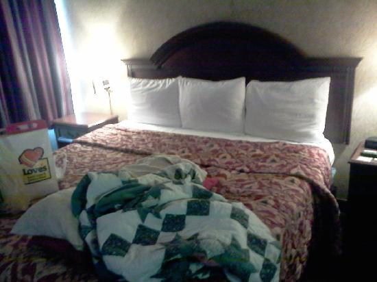 Econo Lodge: comfortable king bed