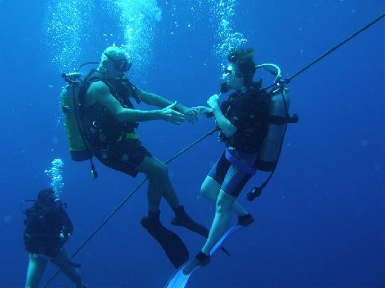 Saba Deep Dive Center: Underwater Waltz