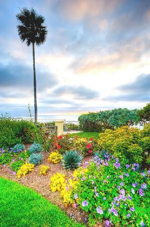 The Ritz-Carlton, Laguna Niguel: Part of garden next to ocean cliff