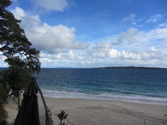 Contadora Island Inn: Playa