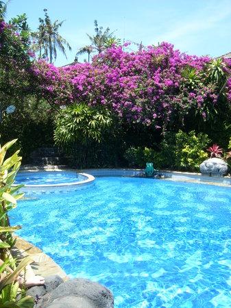 Ramayana Hotel: The pool
