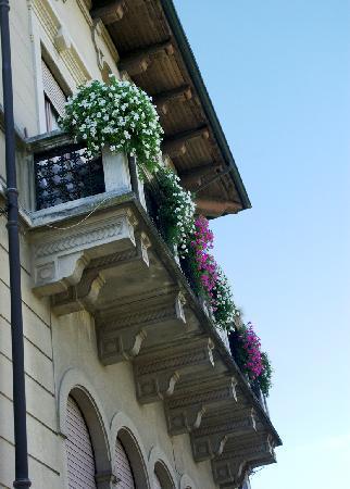 Villa Pichetta B&B : Flowers