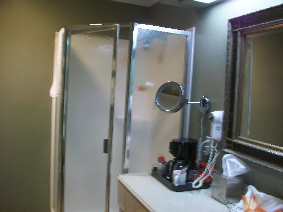 Parc England Boutique Hotel: Nice stand up shower