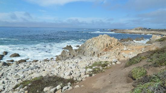 17-Mile Drive: amazing Views