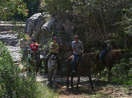 Garden Route Horse Trails: Thw waterfall ride in the Garden Route National Prk