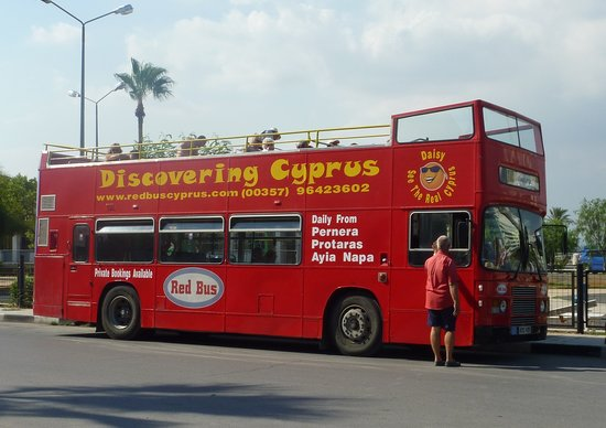 Red Bus Cyprus : The bus