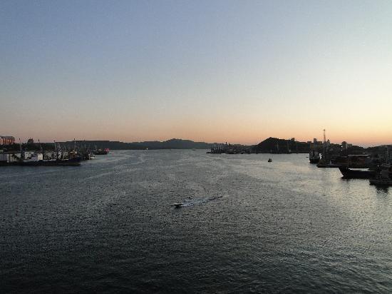 Golden Horn Bay : Many sea vessels
