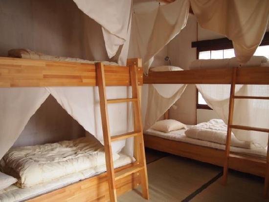 Yuzan Guesthouse: 女性専用ドミトリー Female dormitory